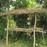 Seedling hub