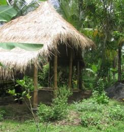 Nyomans Medicinal Garden