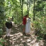La Pila di Bettona/Umbria 2012 Herbal/Yoga/Permaculture Workshop