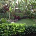 Poem edible garden