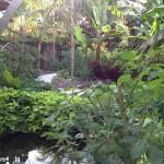 Poem pond